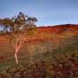 Hamersley Range Karijini